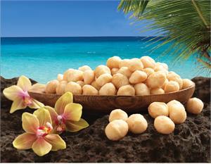 hawaii's-best-souvenirs